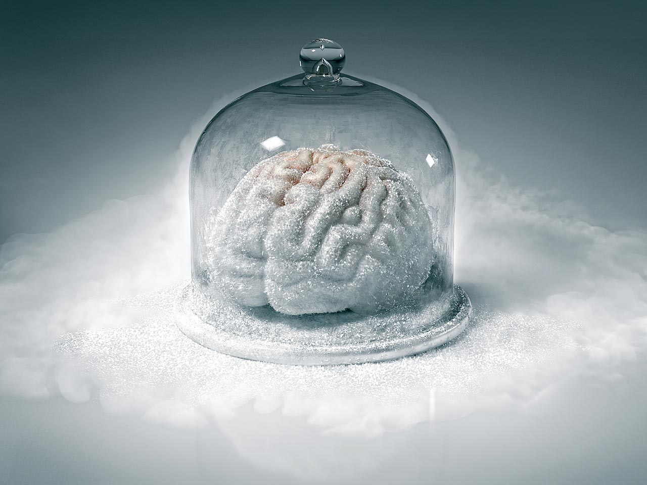 Frozen Brain-0
